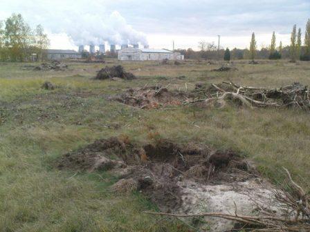 Das Vereinsgelände (Bäume wurden gefällt und entwurzelt)